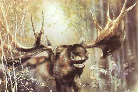 Тваринки - листівки та привітання, #75