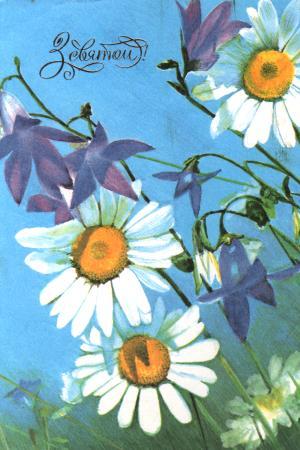 Зі святом - листівки та привітання, #127