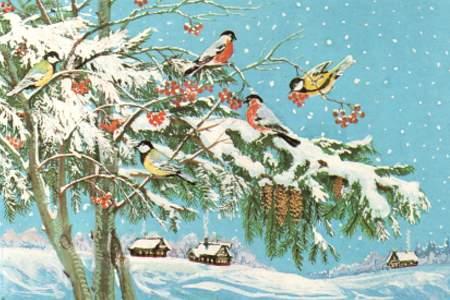 Краєвиди - листівки та привітання, #179