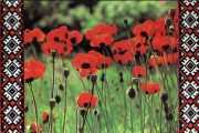 Листівка #311 з розділу Квіти