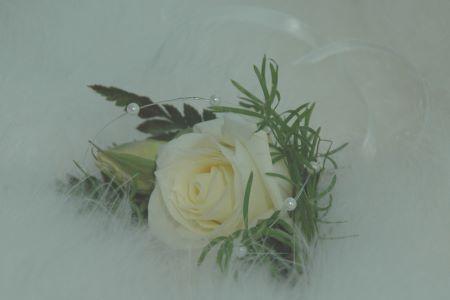 Одруження - листівки та привітання, #450
