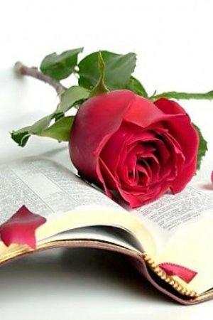 День Св. Валентина - листівки та привітання, #1006