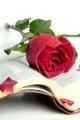 Листівка #1006 з розділу День Св. Валентина