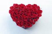Листівка #1013 з розділу День Св. Валентина