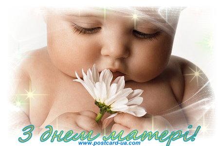 День Матері - листівки та привітання, #3651